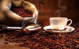 pengusaha kopi gayo yohanes chandra ekajaya
